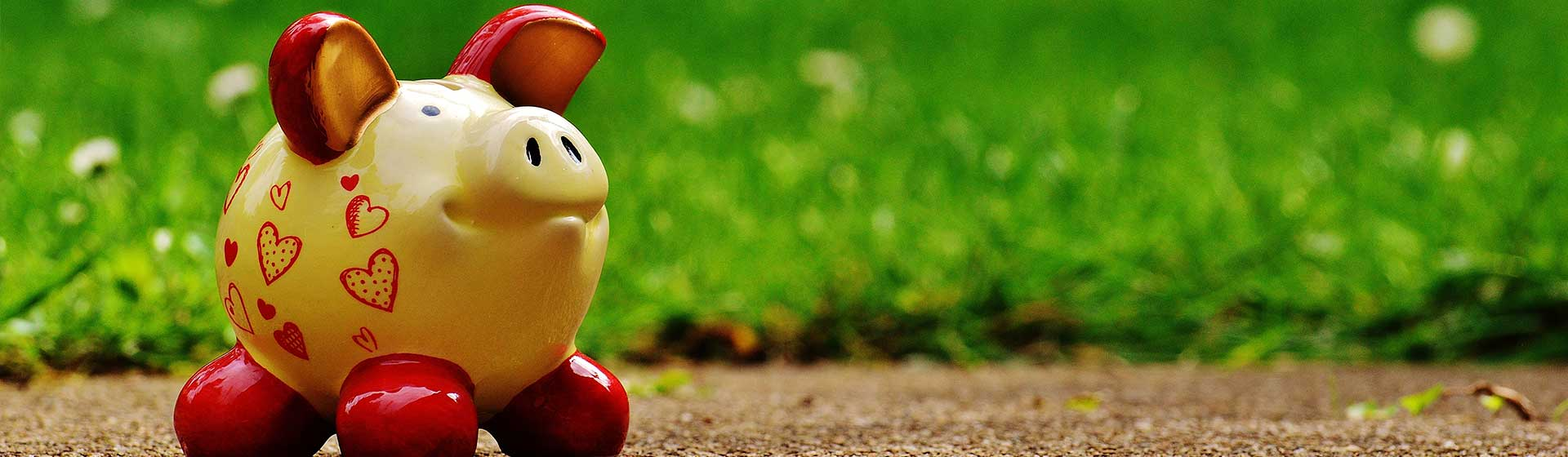 Ceramic piggy bank against a green grass background